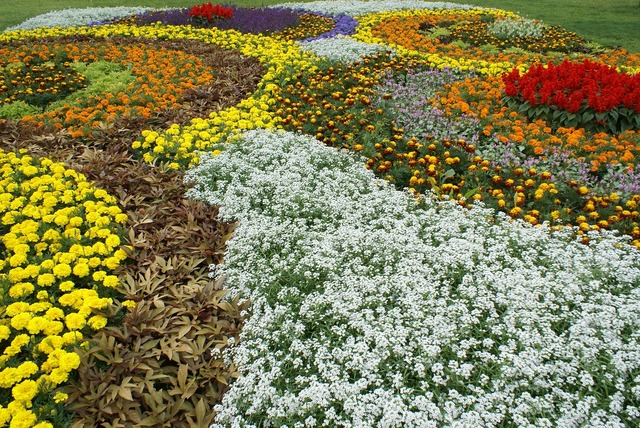 State garden show flowers free photos.