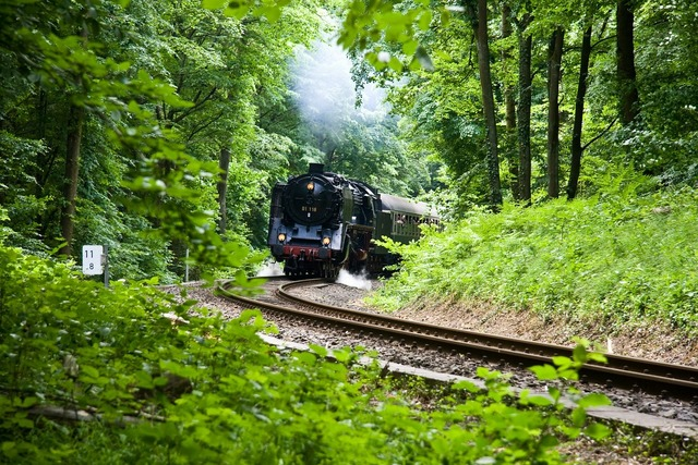 Steam train nature forest, nature landscapes.