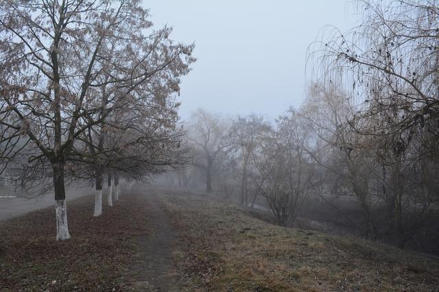 Ștefan vodă gealair river late autumn.