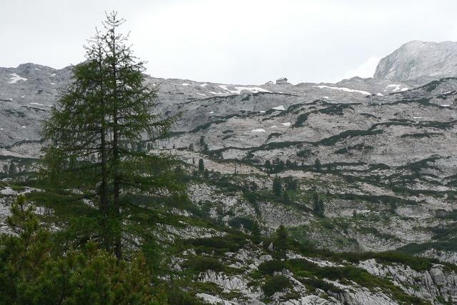 Steinernes meer cottage mountains.