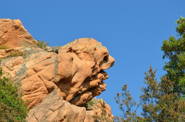 Stone dog head formation.