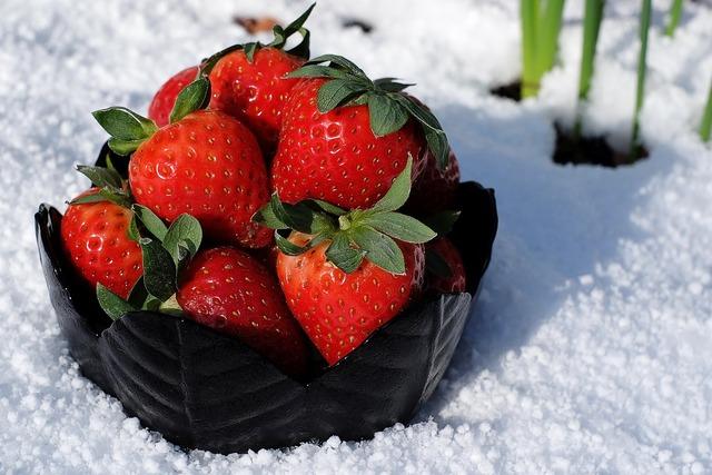 Strawberries bowl appetizing.