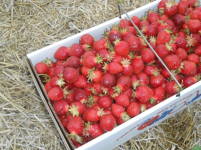 Strawberries fresh fruit, food drink.