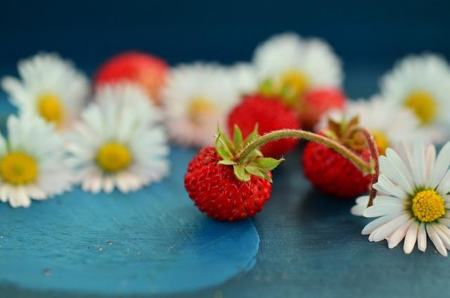 Strawberries wild strawberries daisy, food drink.