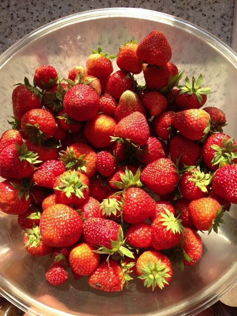 Strawberry summer berry.