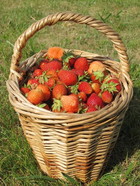 Strawberry summer dacha.