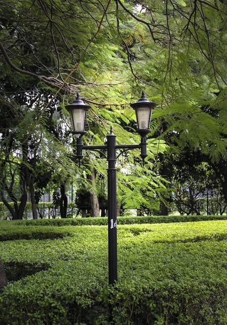 Street lamp park lamp.
