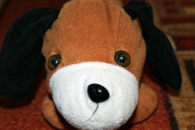 Stuffed animal dog floppy ear, animals.