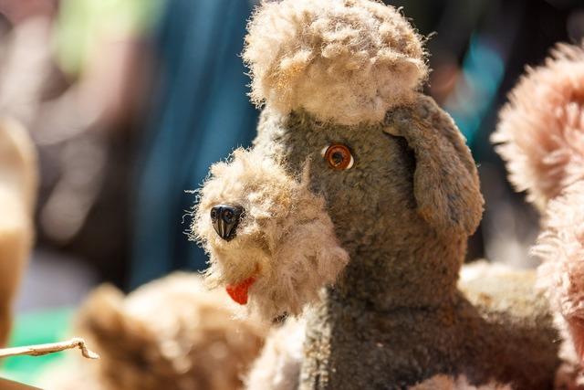 Stuffed animal dog toys, animals.