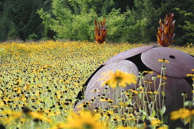 Summer meadow art.