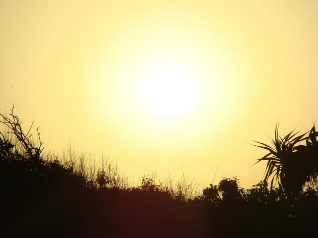 Sun sunset yellow, travel vacation.