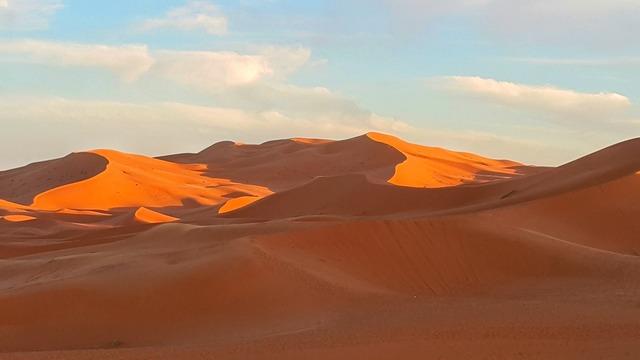 Sunset sand dune desert, travel vacation.