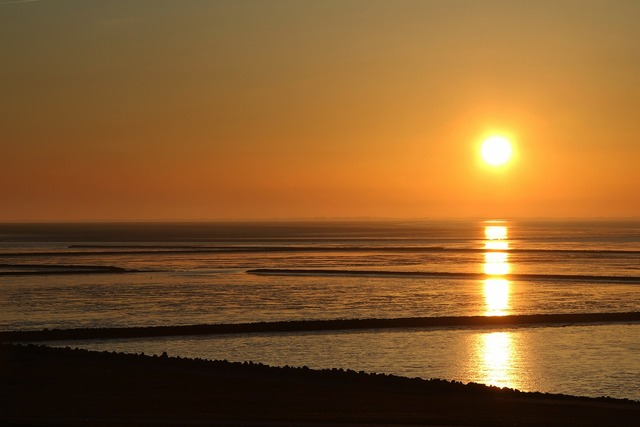 Sunset wadden sea north sea, travel vacation.