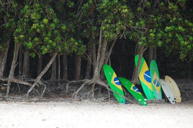 Surf beach lei, travel vacation.