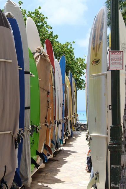 Surfboards boards beach, travel vacation.