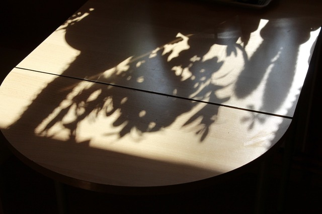 Table shadow hispanic, nature landscapes.