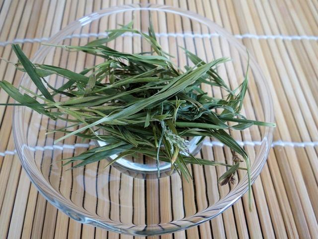 Tea green bamboo, nature landscapes.