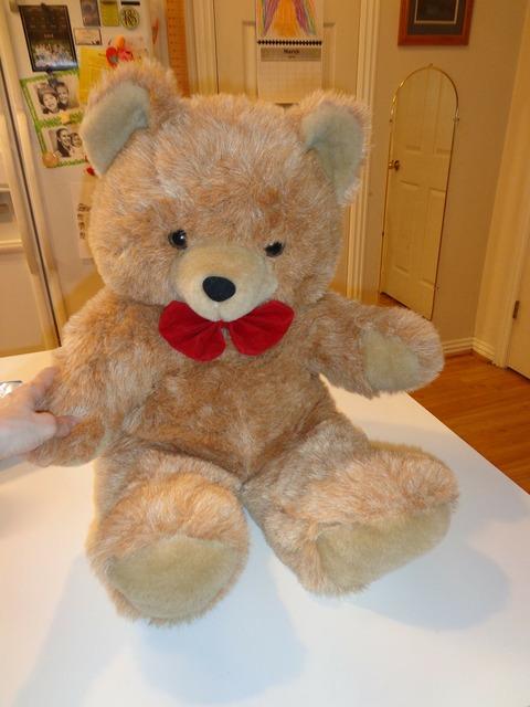 Teddy bear stuffed animal animal, animals.