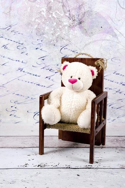 Teddy bear white studio.