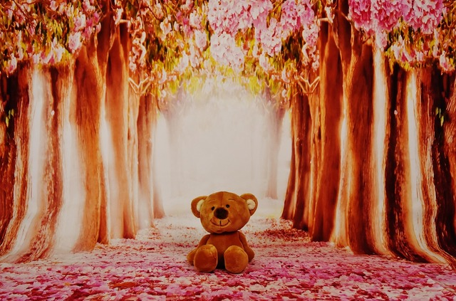 Teddy forest trees, nature landscapes.