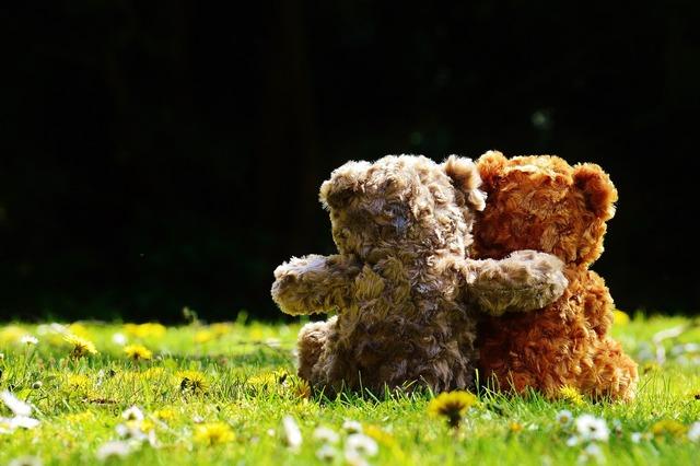 Teddy love romantic, emotions.