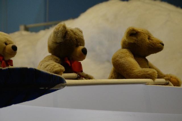 Teddy teddies bear, animals.