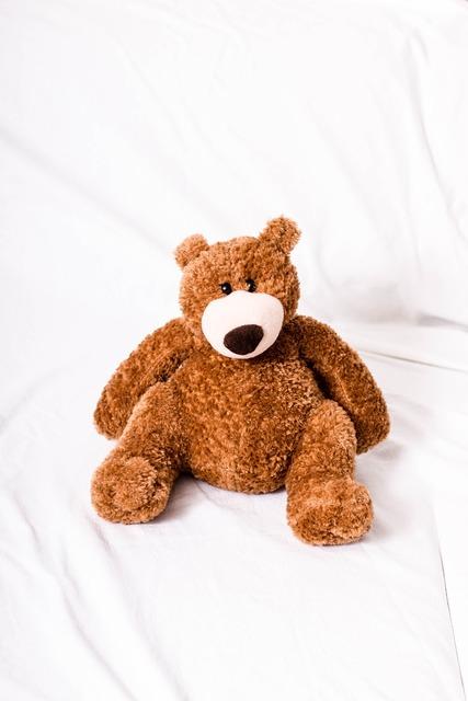 Teddy teddy bear bear.