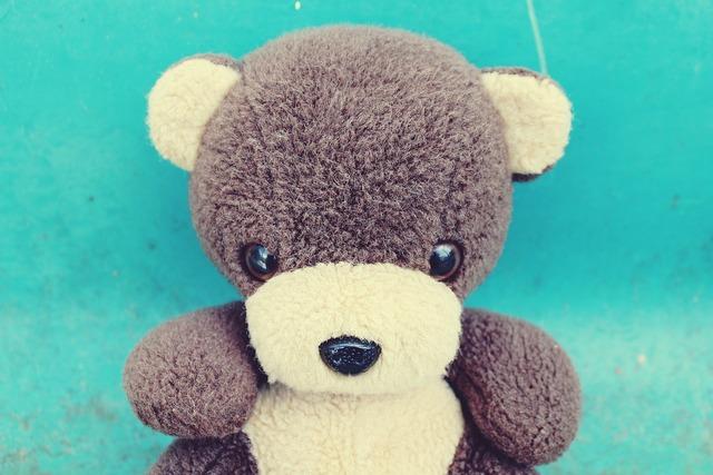 Teddy teddy bear bear, animals.