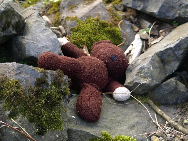 Teddy teddy bear lost, emotions.