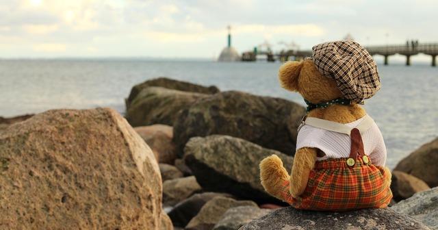 Teddy teddy bear soft toy, travel vacation.