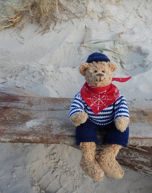 Teddy teddy bear toys, travel vacation.