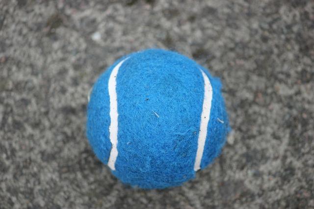 Tennis ball ball sport, sports.
