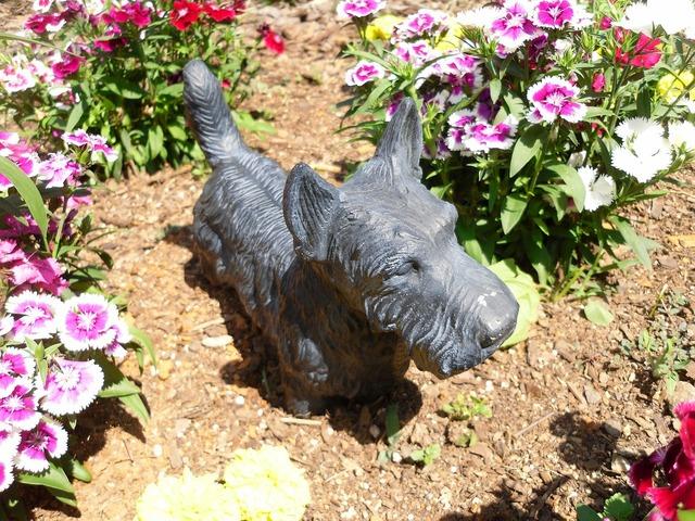 Terrier bronze statue, animals.