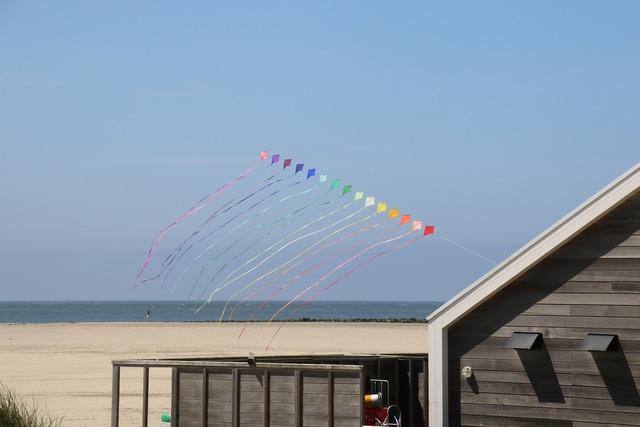 Texel beach north sea, travel vacation.