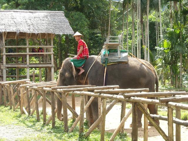 Thailand thai nature park, nature landscapes.