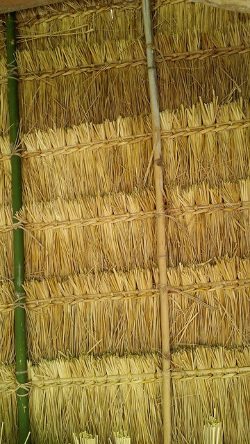 Thatch roof laos, travel vacation.