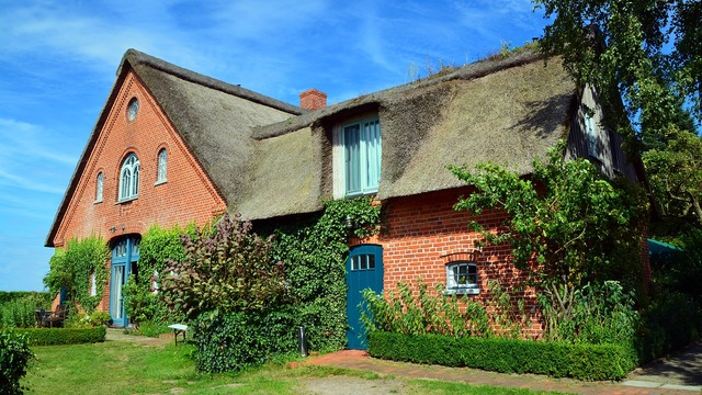 Thatched cottage rural reed, architecture buildings.