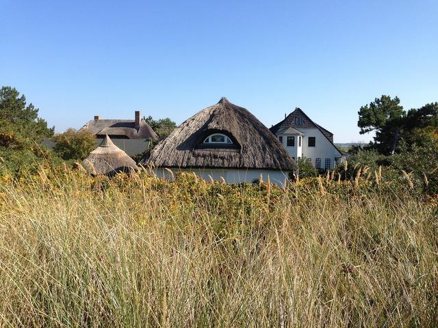 Thatched roof homes village, nature landscapes.