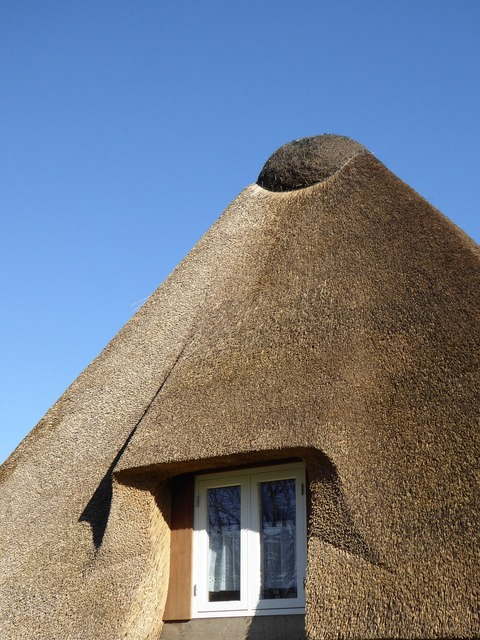 Thatched roof reed roof, architecture buildings.