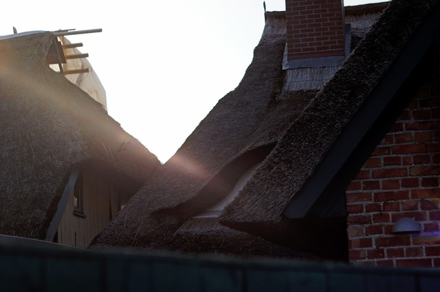 Thatched roof roofs ensemble, architecture buildings.