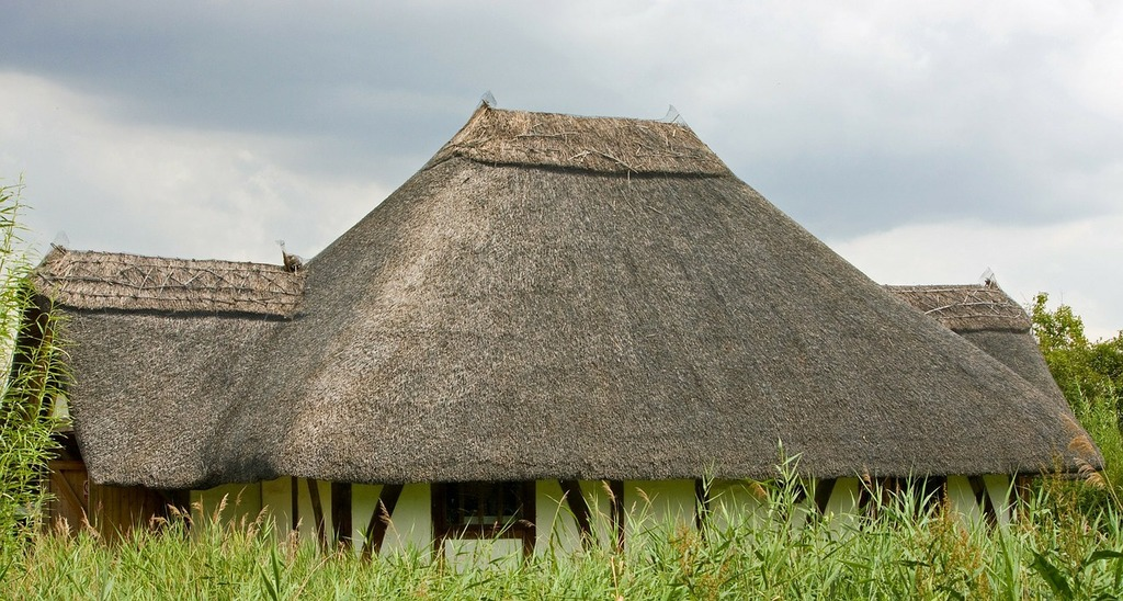 Thatched roof thatch roof thatch.