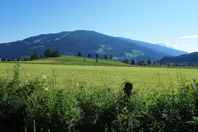 The alps austria europe, nature landscapes.