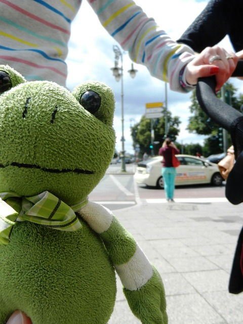 The frog żabka the mascot, animals.