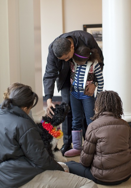 The obama family welcomes bo puppy 6 months, emotions.