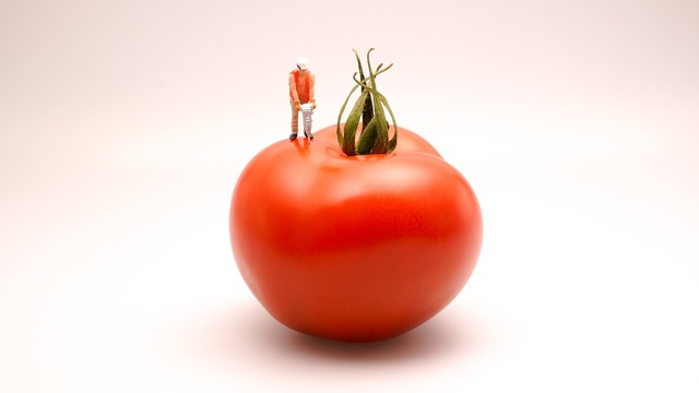 Tomato food kitchen, food drink.