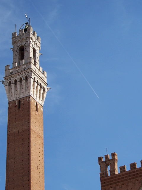 Torre siena medieval tower, architecture buildings.