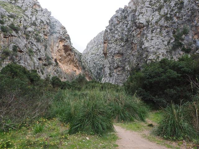 Torrent pareis gorge riverbed, nature landscapes.