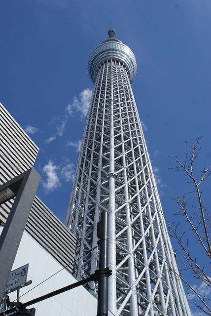 Tower tokyo skytree, architecture buildings.