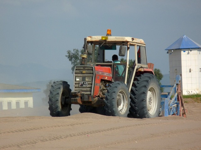 Tractor massey ferguson beach, travel vacation.