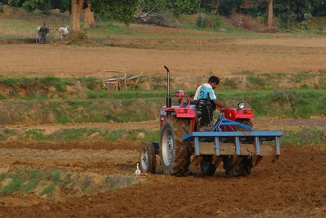 Tractor tiller tilling.